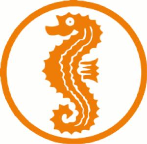 Seepferdchen abzeichen in den Lenitas Schwimmkursen