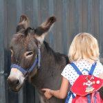Kind mit Esel Paule