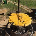 Mais wird im Bauernhofkindergarten über Feuer gegrillt
