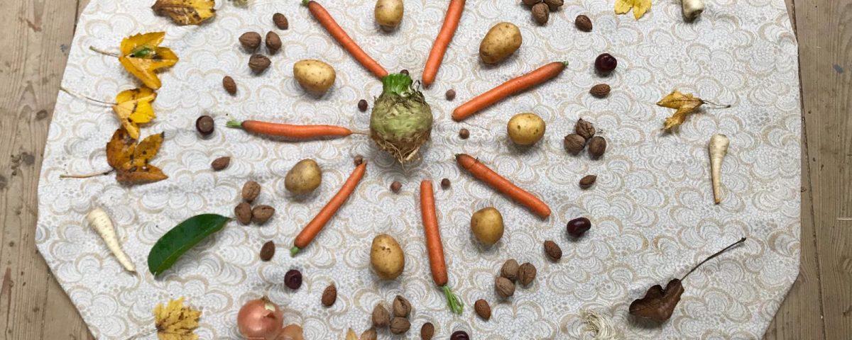 Gemüse aus dem Bauernhofkindergarten